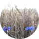 20190525181323 4 1l8n12f.jpg?crop=faces&fit=facearea&h=80&w=80&mask=ellipse&facepad=3
